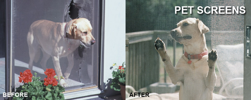 Pet Screen Before After