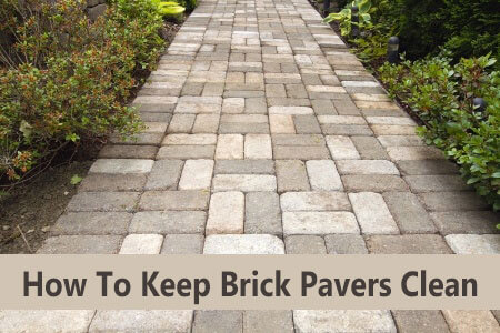 How To Clean Brick Pavers Routine Maintenance Will Keep