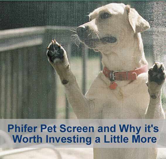 Pet Screen and Why it's Worth Investing a Little More