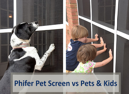 How Pet Screen is Necessary for a Screen Enclosure if You Have Pets or Kids